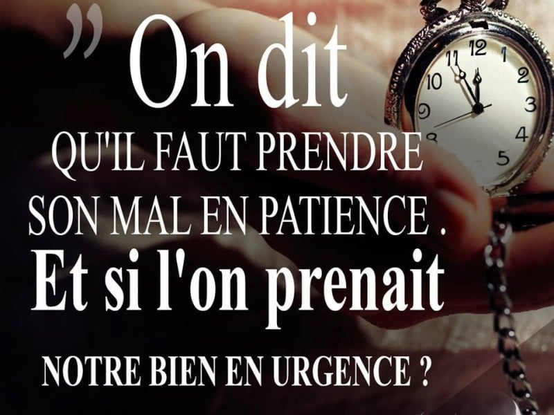 citation mal en patience
